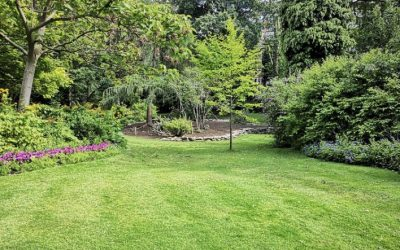 12 Landscape Tips To Make Your Outdoor Space Eco-Friendly